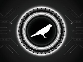 Altair Network wins 9th Kusama parachain auction