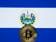 El Salvador to channel Bitcoin gains into a veterinary project